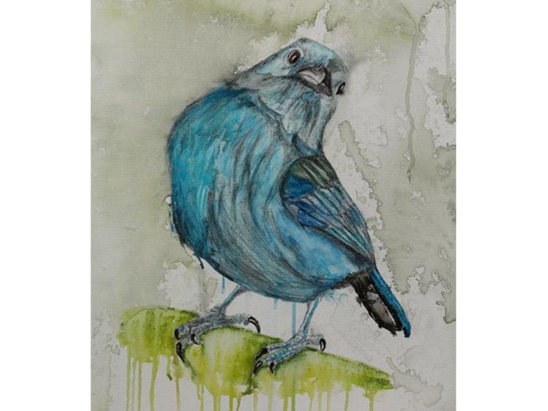 Martínez / 32 aves de mi jardín serie 3