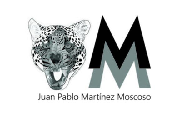 Martínez Juan Pablo  | ARTEX