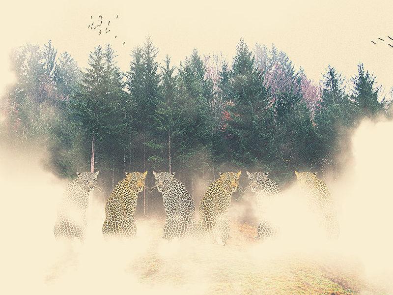 En las nubes - Pinto Pamela | ARTEX