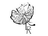 Rodriguez Lisseth / Revelación - Rodriguez Lisseth