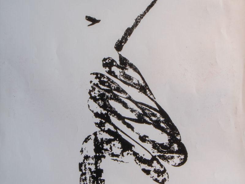 Guadalupe Huerta / El caballero águila