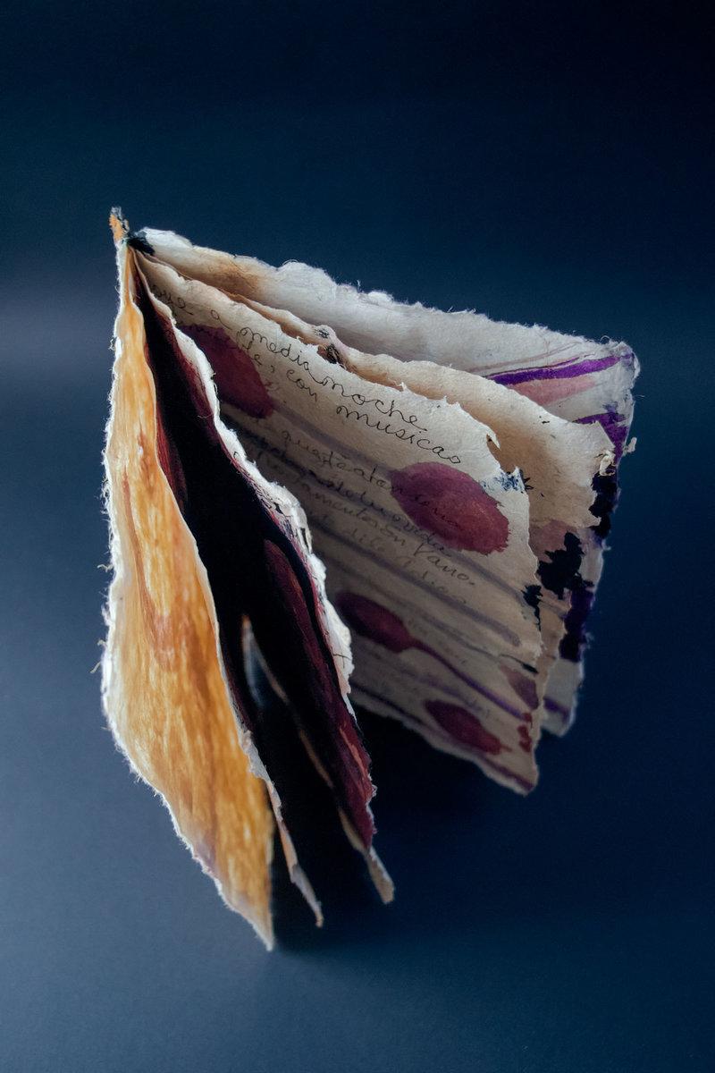 Documento Canafiano. Siglo XX al XXI | Guadalupe Huerta Tonantzin
