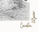 Carolina Alfonso / Granos de quinua - Alfonso Carolina