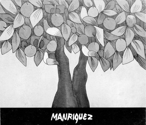 Manríquez Fernando | ARTEX