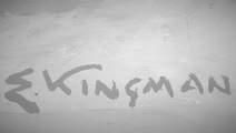ST Maternidad - Galería Kingman