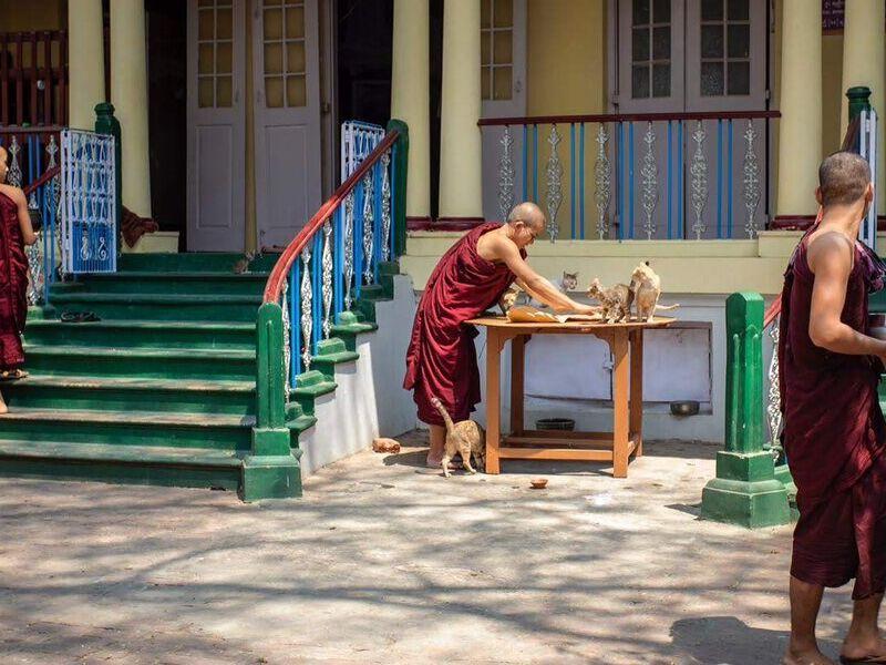 Burma by the Hour - 11 am