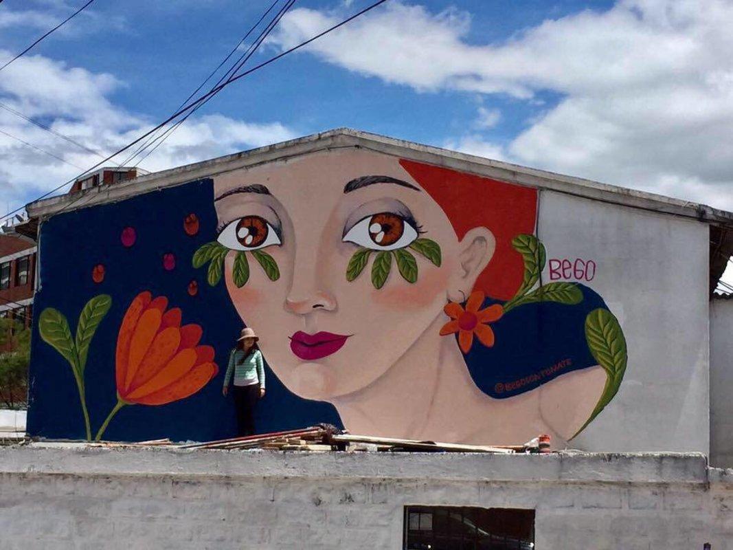 muralismo | Salas Begoña
