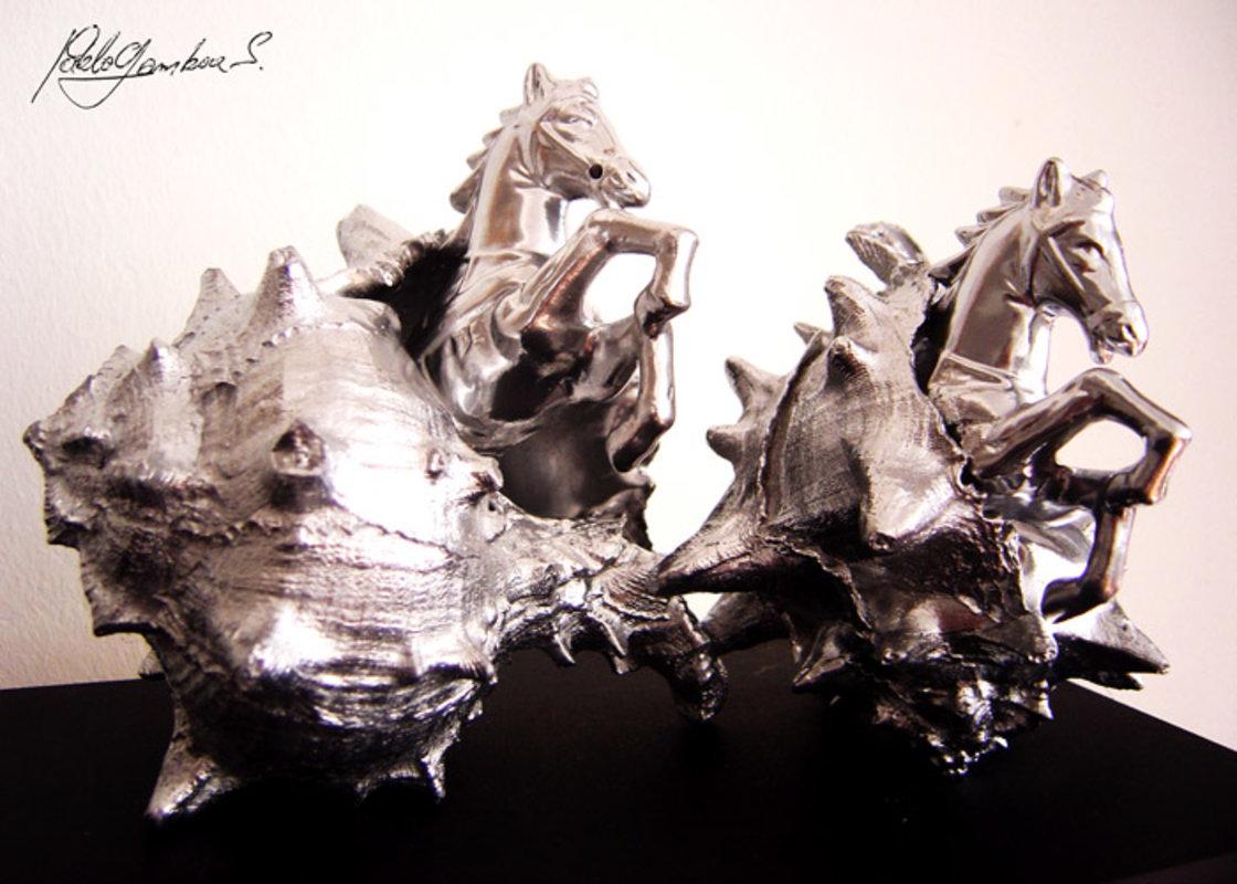 Sea Horses | Gamboa Pablo