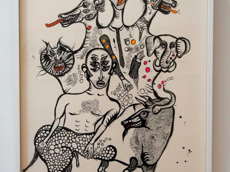 Ana Fernandez / Lo humano y no-humano