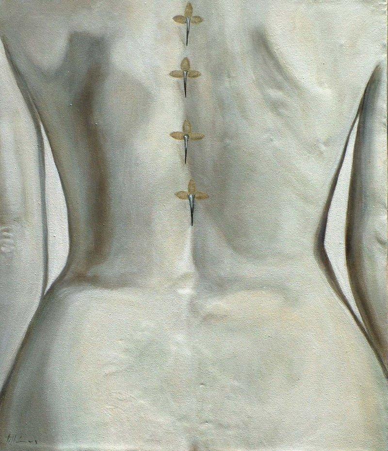 Libelula | Santillán David