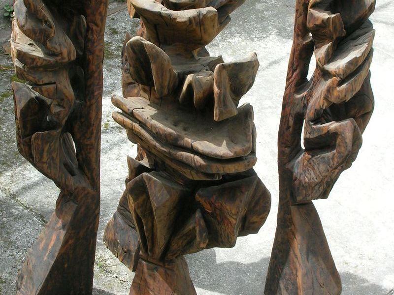 el interior de un árbol