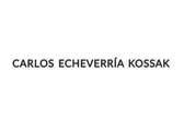 Echeverría Kossak Carlos / Un domingo - Echeverría Kossak Carlos