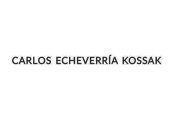 Echeverría Kossak Carlos / El estado